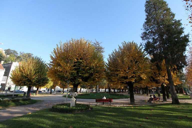 Jornal Campeão: Coimbra: Parque de Manuel Braga vai ser requalificado