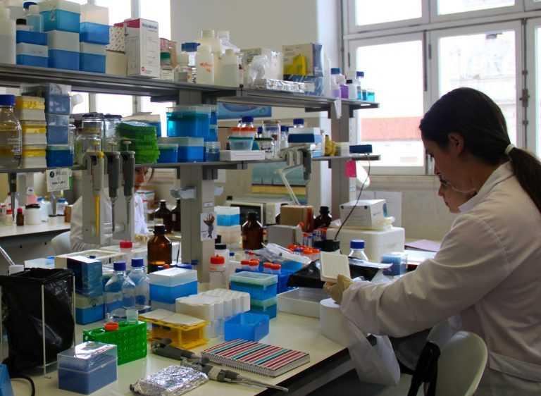 Jornal Campeão: UC: Biotecnologia recebe financiamento europeu a triplicar