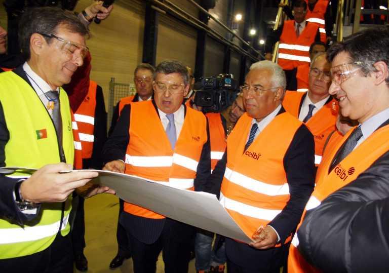 Jornal Campeão: Figueira da Foz: Governo aposta na produtividade do eucalipto