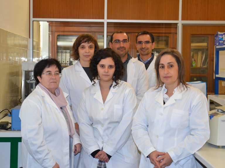 Jornal Campeão: Equipa da UC descobre proteínas que afectam a murchidão dos pinheiros