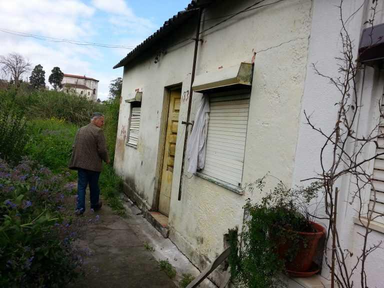 Jornal Campeão: Coimbra: Quando cães e gatos fazem inveja…