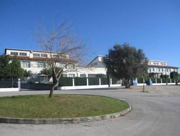 Jornal Campeão: Instituto Educativo de Souselas cria cursos únicos no país
