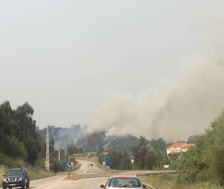 Jornal Campeão: Relatório: Mais de metade das vítimas do fogo morreram quando fugiam