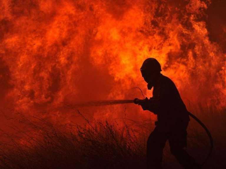 Jornal Campeão: Coimbra: Prisão preventiva para bombeiro incendiário