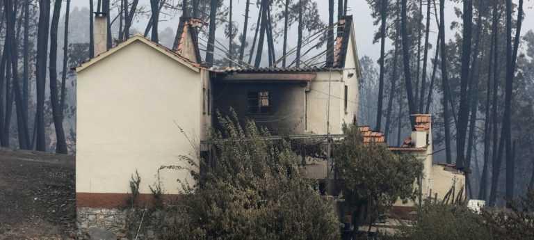 Jornal Campeão: Empresas afectadas pelos fogos de 2017 com apoios por mais seis meses