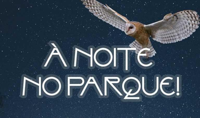 Jornal Campeão: Parque Biológico da Serra da Lousã promove visita nocturna