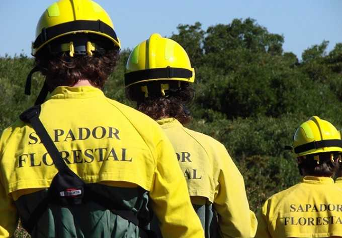 Jornal Campeão: Oliveira do Hospital: Costa apresenta novos sapadores florestais