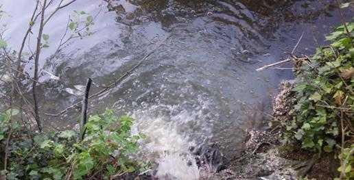 Jornal Campeão: ETAR vai acabar com descargas poluentes em Cantanhede e Mira