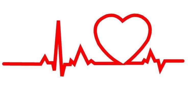 Jornal Campeão: Fundação de Cardiologia lança plataforma para assinalar mês do coração