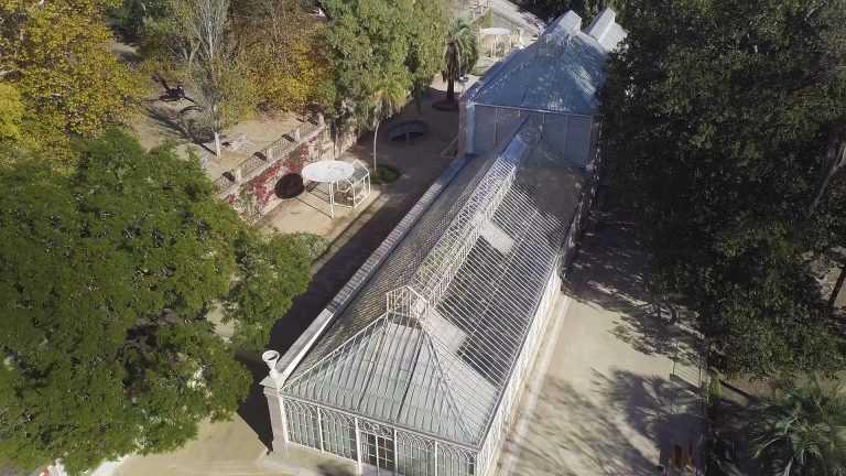 Jornal Campeão: UC: Estufa Grande do Jardim Botânico abre requalificada