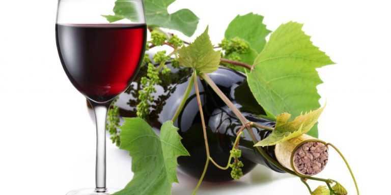 Jornal Campeão: Freguesia de Podentes com nova mostra de vinhos e produtos endógenos