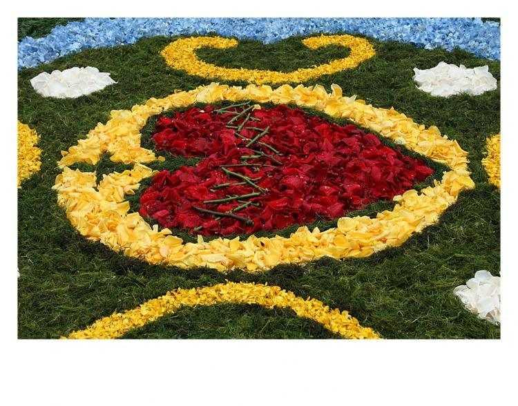 Jornal Campeão: Miranda do Corvo: Lamas atrai com tapete de flores de um quilómetro