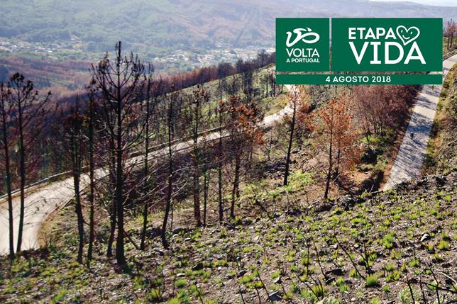 Jornal Campeão: Ciclismo: Volta a Portugal com etapa pelos concelhos do fogo