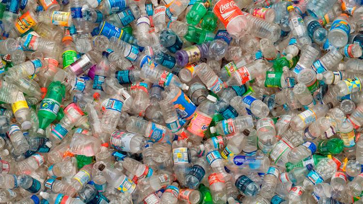 """Jornal Campeão: Dia Mundial do Ambiente declara """"guerra"""" ao plástico"""