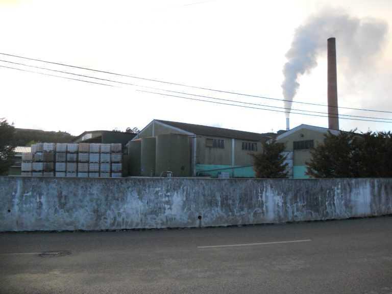 Jornal Campeão: Alcarraques: PEV desconfia que fábrica saiba quando é fiscalizada