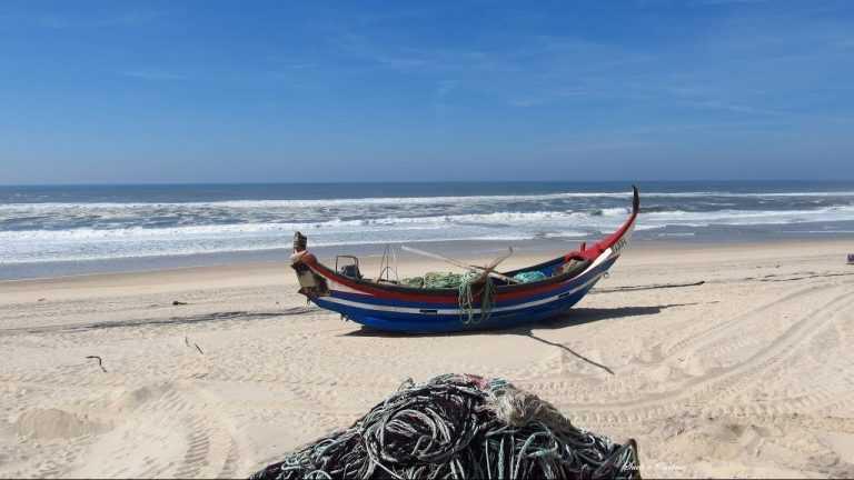 Jornal Campeão: Praia de Mira hasteia pela 32.ª vez consecutiva a Bandeira Azul