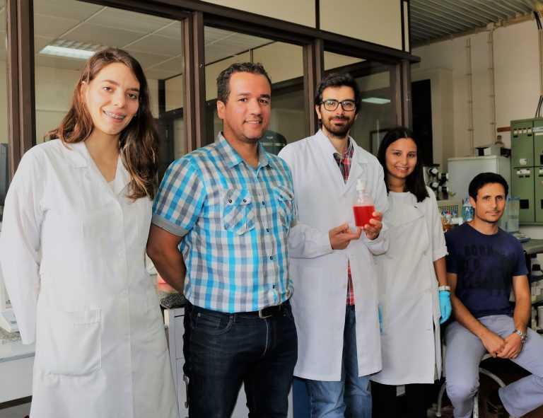 Jornal Campeão: Detergente ecológico obtido a partir de óleo alimentar usado