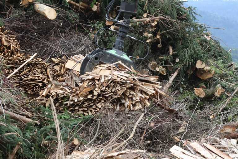 Jornal Campeão: Góis: Quatro parques de recolha para valorizar biomassa florestal