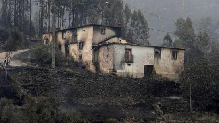 Jornal Campeão: Pedrógão Grande: Subsídios para habitações envolve 44 arguidos