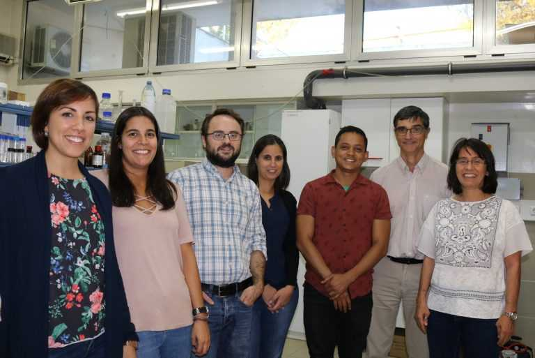 Jornal Campeão: UC desenvolve projecto inovador para eliminar bactérias nos hospitais