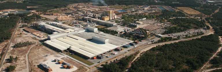 Jornal Campeão: Navigator entre as maiores empresas exportadoras do país