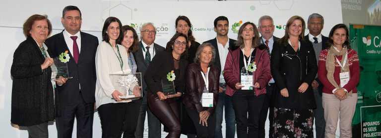"""Jornal Campeão: Projecto """"Informat"""" de Xavier Viegas vence concurso de empreendedorismo"""