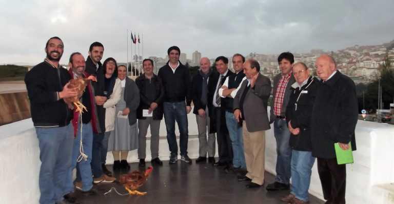 Jornal Campeão: Festa do Galo estende-se do Terreiro da Erva até Santa Clara