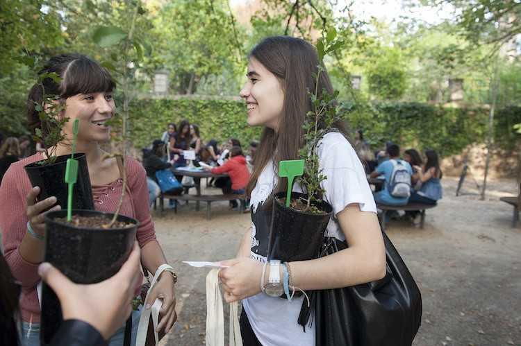 Jornal Campeão: UC: Estudantes vão replantar quinta do Palácio de São Marcos
