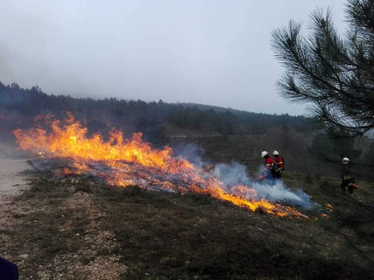 Jornal Campeão: Miranda do Corvo: Bombeiros aprendem a fazer fogo controlado