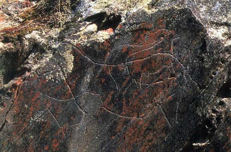 Jornal Campeão: Fundão: Gravuras rupestres descobertas na Serra da Gardunha