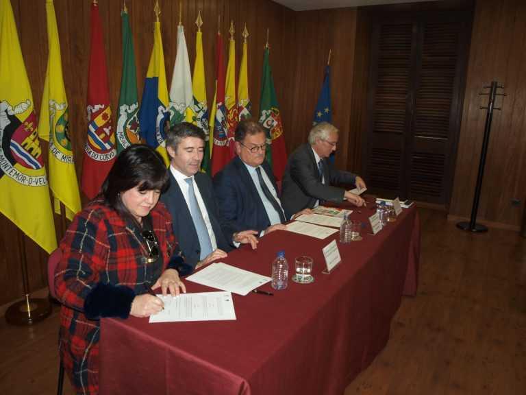 Jornal Campeão: Cantanhede: Município vai ter Gabinete de Apoio ao Emigrante