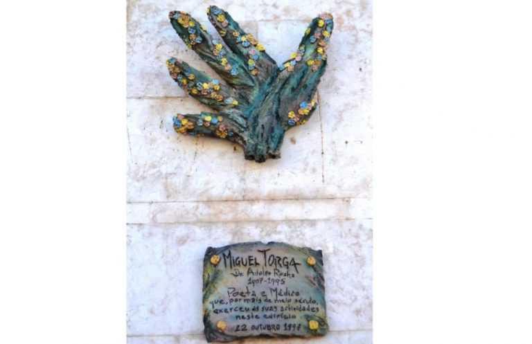 Jornal Campeão: Fevereiro traz visitas guiadas sobre arte e o mundo de Miguel Torga