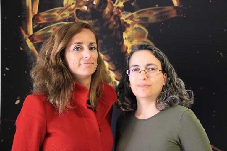 Jornal Campeão: FCTUC: Cientistas reúnem toda a informação sobre os rios de Portugal