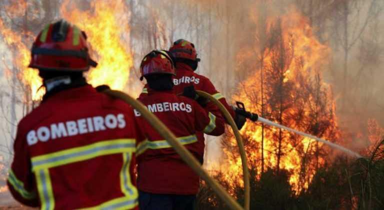 Jornal Campeão: Bombeiros feridos no fogo da Serra da Lousã já tiveram alta hospitalar