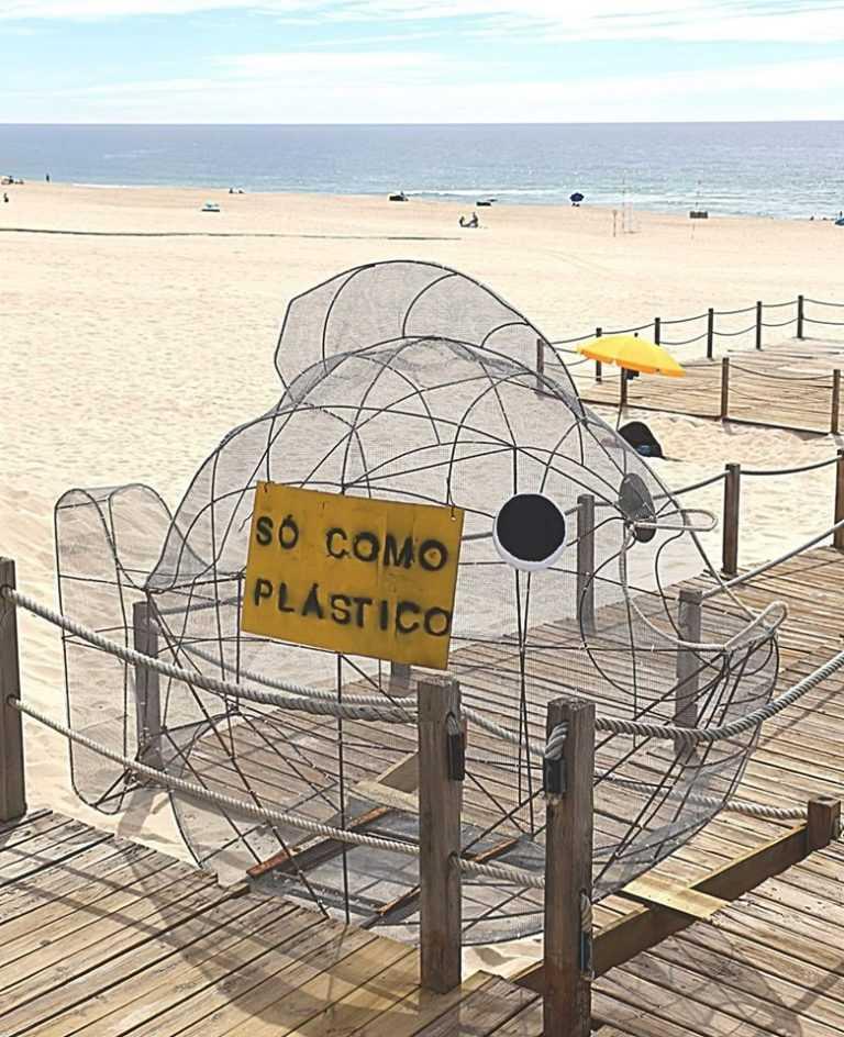 Jornal Campeão: Praia da Tocha amiga do ambiente