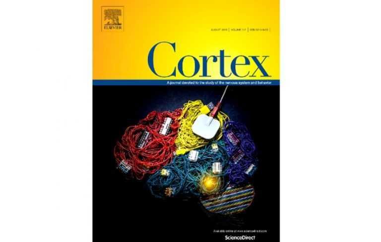 Jornal Campeão: Revista Cortex faz capa com investigação da Universidade de Coimbra