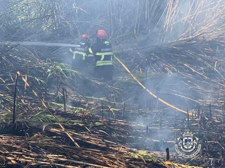 Jornal Campeão: Figueira da Foz reforça segurança para evitar fogos com foguetes