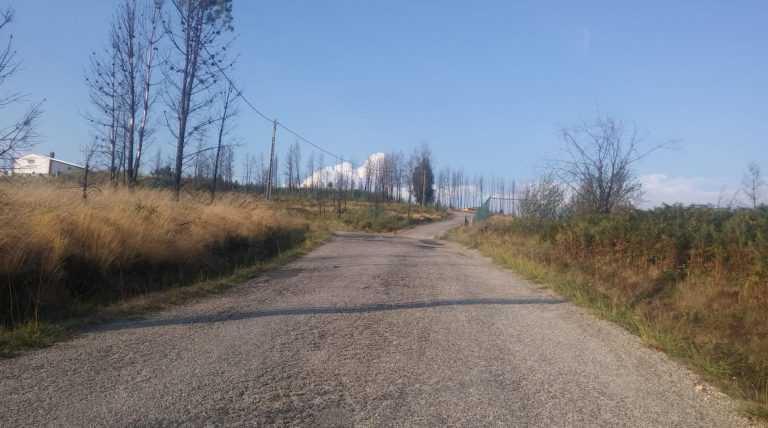 Jornal Campeão: Câmara de Arganil melhora acessos à Zona Industrial e Bairro de Côja