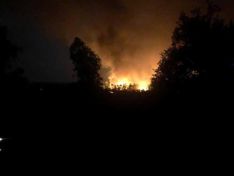 Fogo almalaguês
