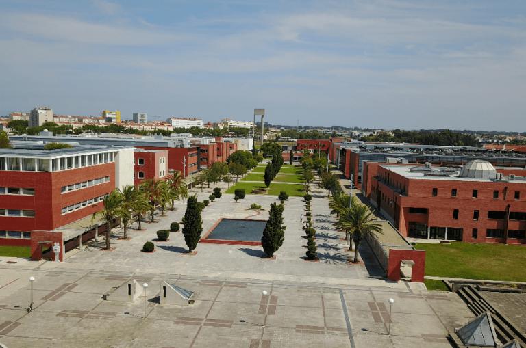 Jornal Campeão: Projecto da Universidade de Aveiro é finalista nos 'Prémios Regiostars'