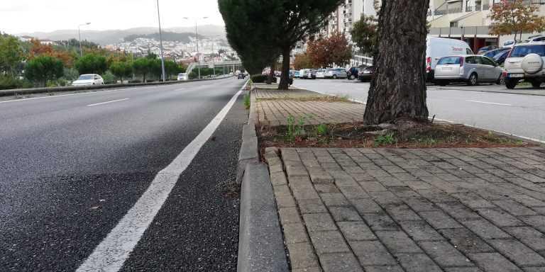 Jornal Campeão: Avenida de Elísio de Moura, em Coimbra, vai ficar mais verde e segura