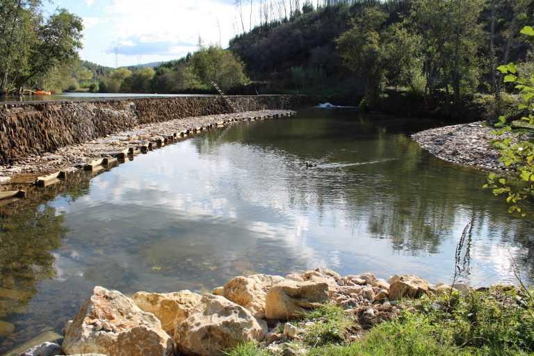 Jornal Campeão: Penacova intervém nos rios Alva e Mondego