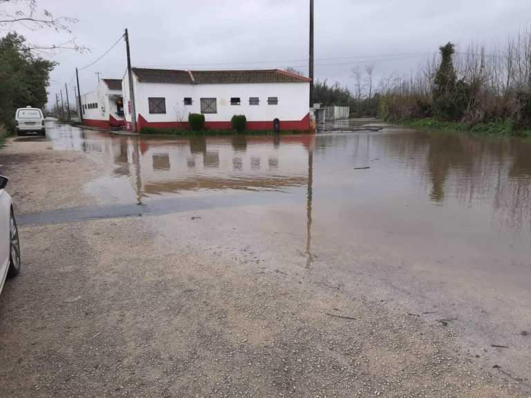 Jornal Campeão: Canil de Coimbra e Soure evacuados durante o dia de hoje