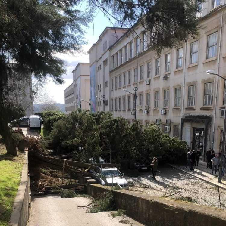 Estragos mau tempo - rua dos Estudos - Alta