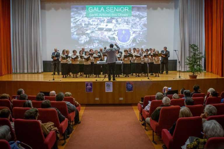 Jornal Campeão: Gala sénior da freguesia dos Olivais este sábado