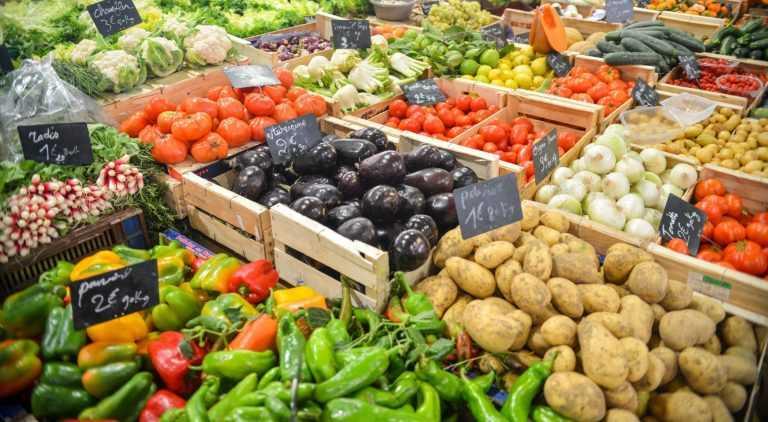 Jornal Campeão: ESAC em projecto para agricultura biológica na Ilha da Madeira