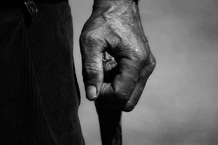 Jornal Campeão: Coimbra: Instituto do Envelhecimento no caminho da Saúde