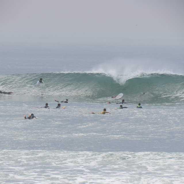 Jornal Campeão: ESEC abre inscrições para Curso de Treinadores de Surfing – GRAU I