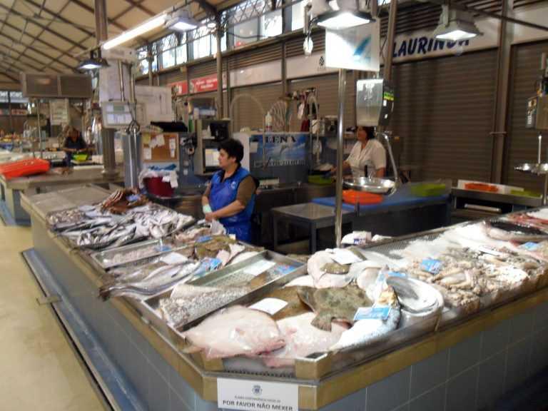Jornal Campeão: Mercado da Figueira da Foz está aberto… e há peixe fresco