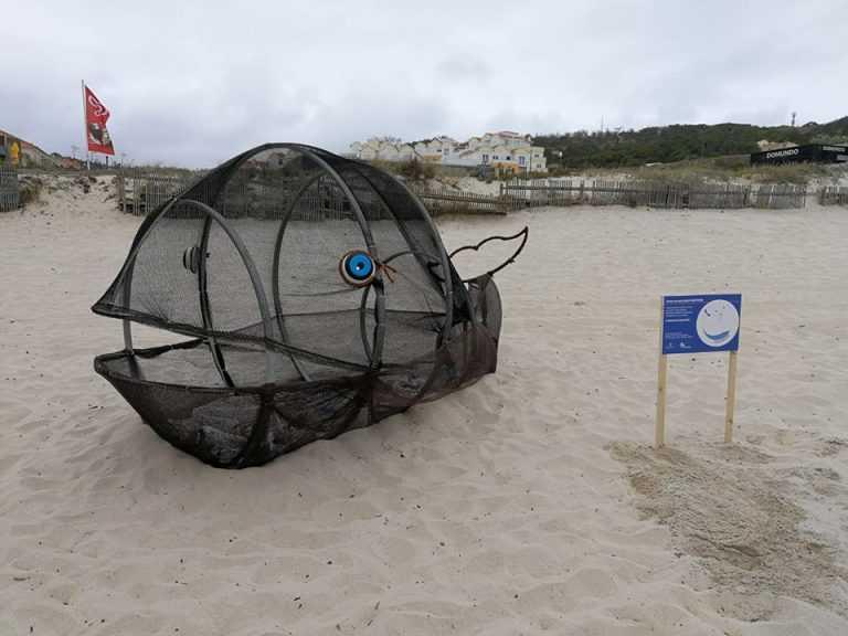 Jornal Campeão: 'Baleias Caça Plásticos' do Exploratório com distinção internacional